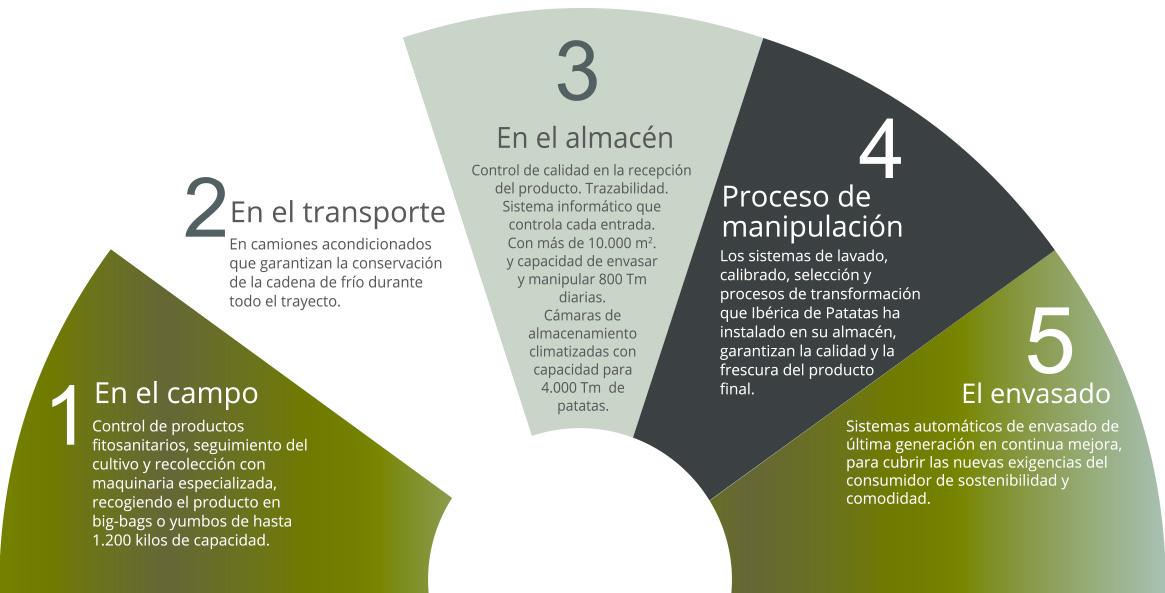 Gráfico de fases del proceso productivo - Ibérica de Patatas