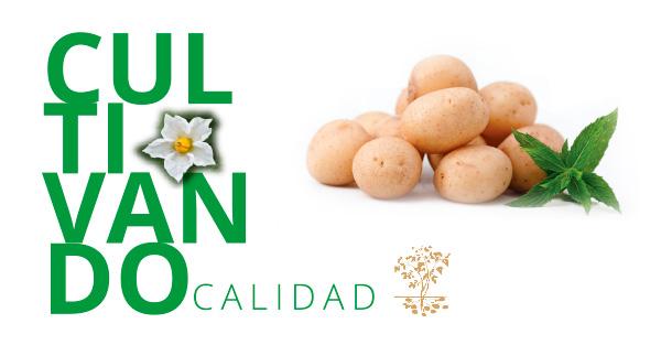 """SELLO """"CULTIVANDO CALIDAD"""". IBÉRICA DE PATATAS"""