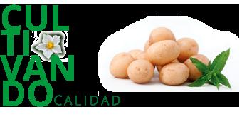 """Imagen de """"el sabor del campo en tu plato"""" - Ibérica de Patatas"""
